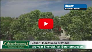 Proven Emerald Ashborer Control Since 2002