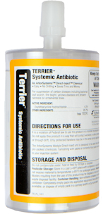 Terrier Antibiotic