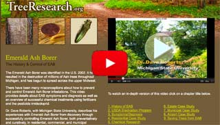 Treeresearch.com